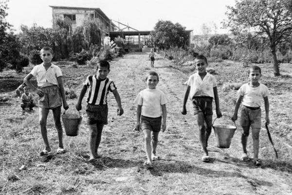 Tuzla Çocuk Kampı, çocuk emeğiyle kurulmuş ve o emeği veren çocukların yaz aylarını geçirdiği bir cennet vaha olmuştu.